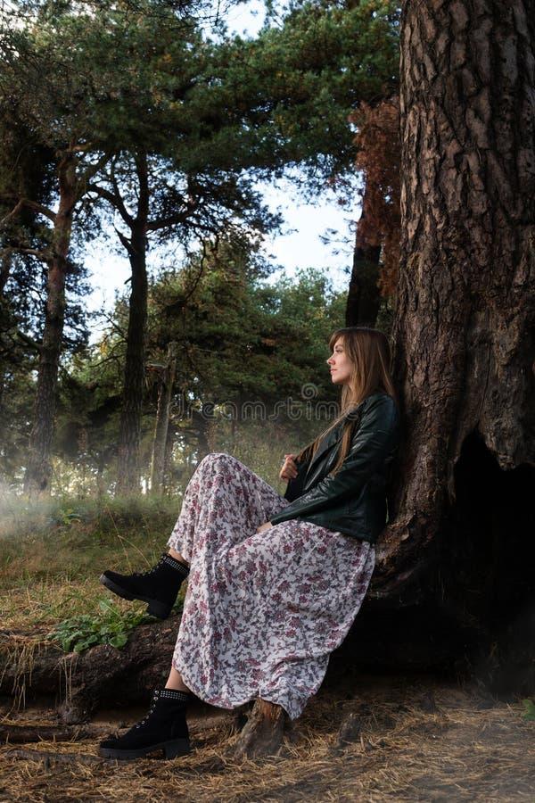 Flickan sitter under ett stort träd och runt om dimman royaltyfria foton