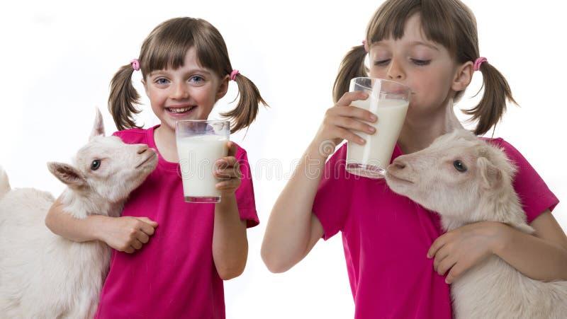 Flickan som dricker den sunda geten, mjölkar arkivfoton