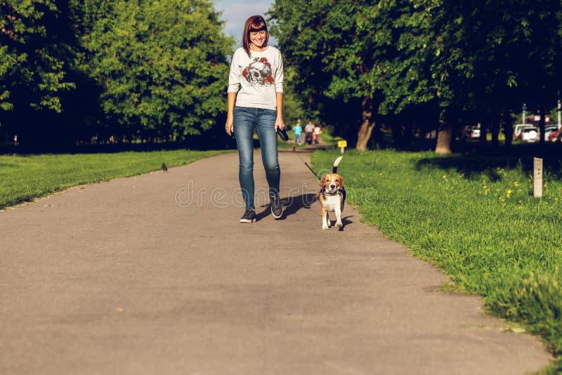 Flickan som går med hennes gulliga kvinnliga beaglehund i, parkerar på sommartid fotografering för bildbyråer