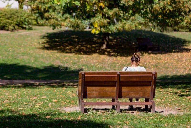 Flickan som sitter p?, parkerar b?nken n?ra Grevenmacher och Luxembourg royaltyfri foto