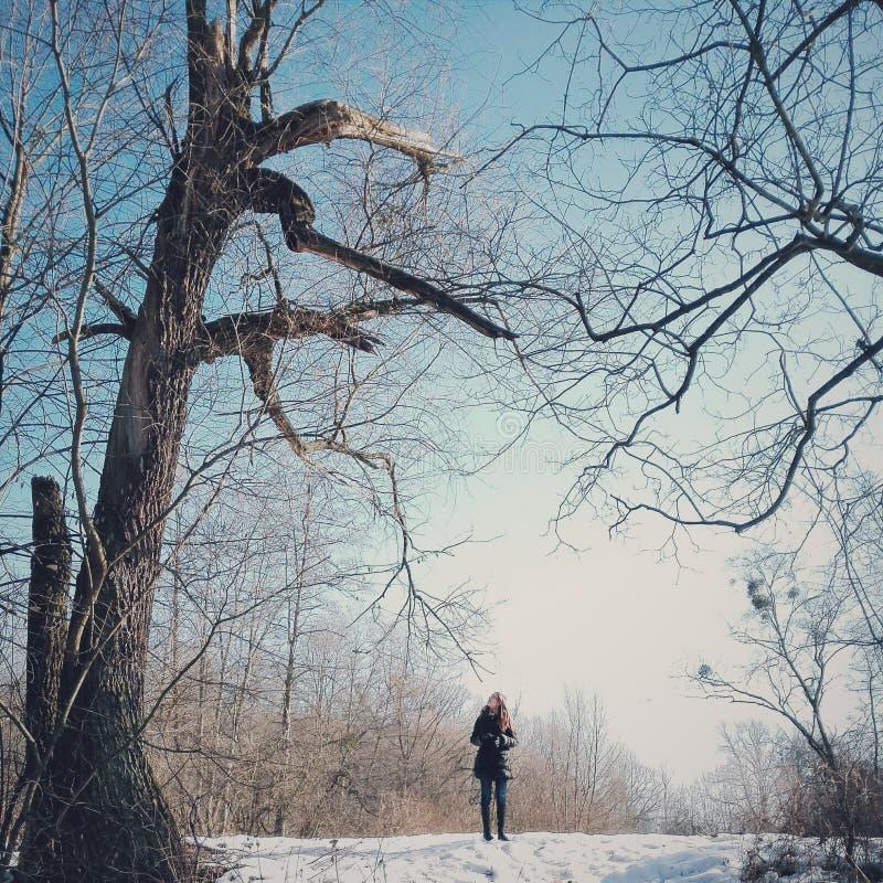 Flickan under gamla förstörda träd fotografering för bildbyråer