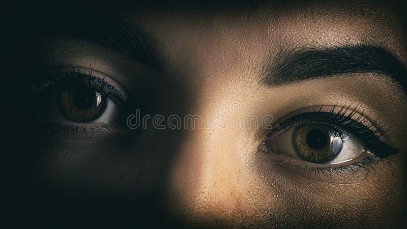 Flickans ögon stänger ståenden av fasan från skuggorna fotografering för bildbyråer
