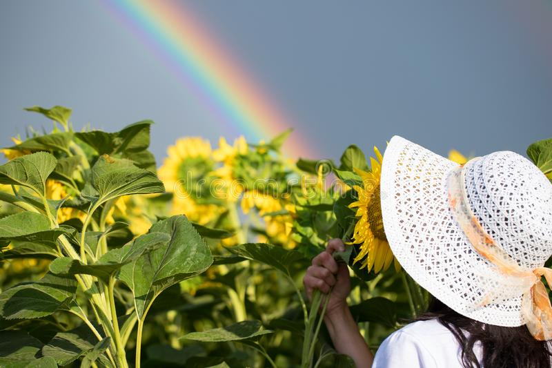 Flickaregnbågeblommor flicka i fältet som rymmer en bukett av solrosor arkivfoto