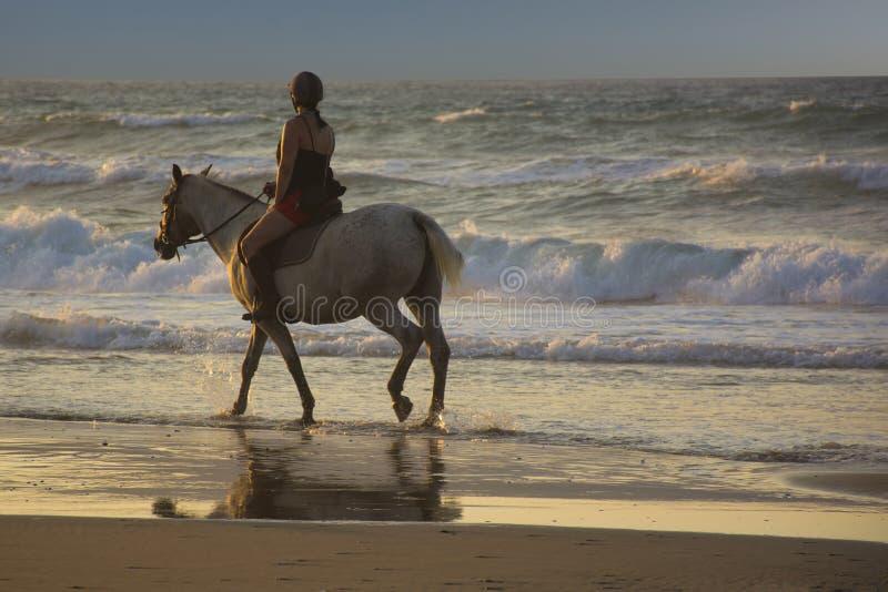 Flickaridninghäst på stranden på solnedgången Skicklig ryttarinna på havet arkivfoton