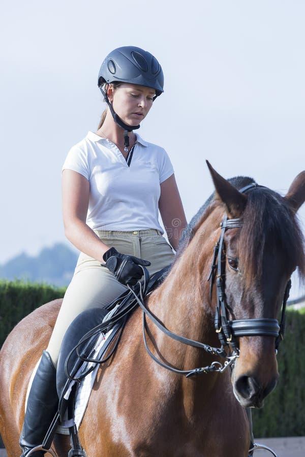 Flickaryttare på hästrygg royaltyfri bild