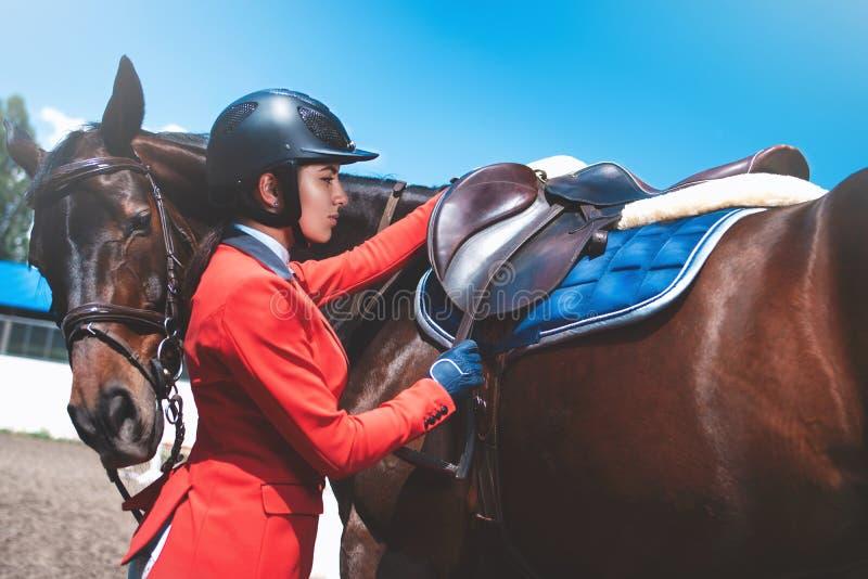 Flickaryttaren justerar sadeln på hennes häst för att ta delen i hästkapplöpningar arkivfoton