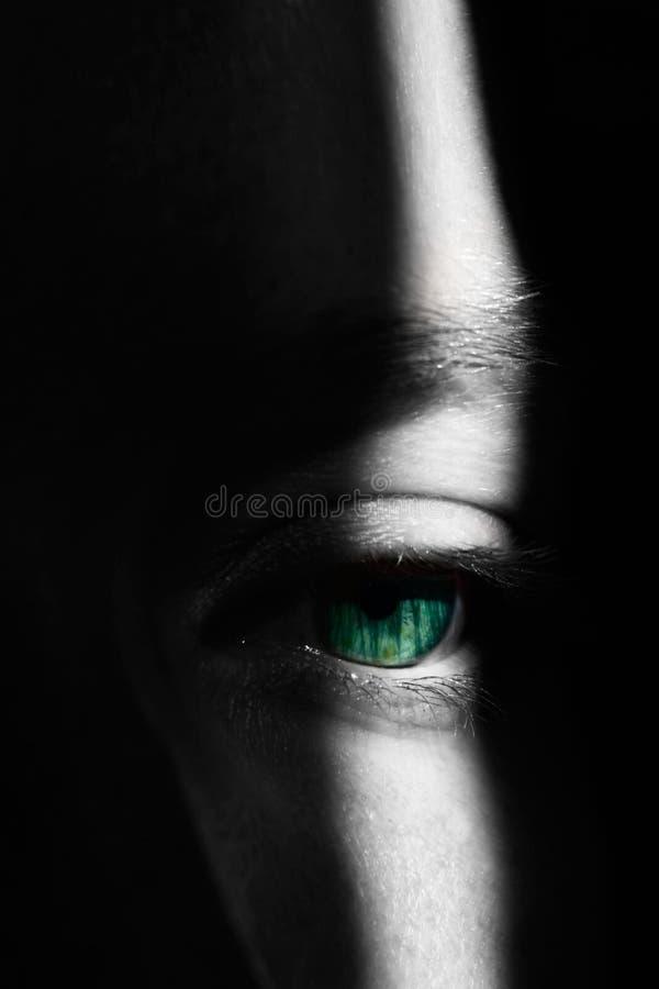 Flickas öga i viktig och skuggor arkivbild