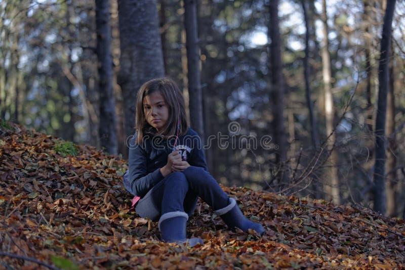 Flickasammanträde i höstsidor i bokträdskog royaltyfri foto