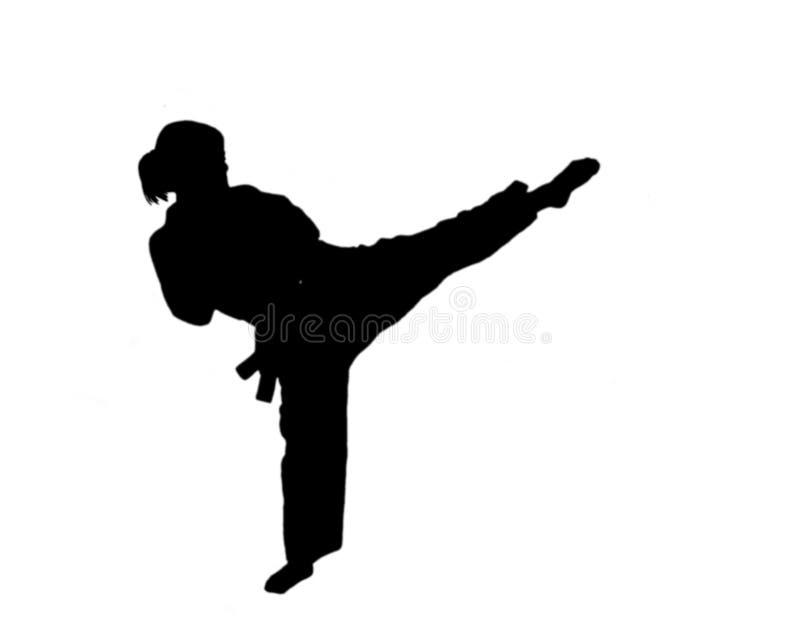 flickasilhouette taekwondo royaltyfria foton