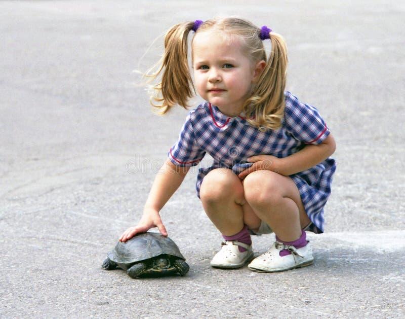 Download Flickasköldpadda arkivfoto. Bild av mjukhet, touch, sommar - 517134