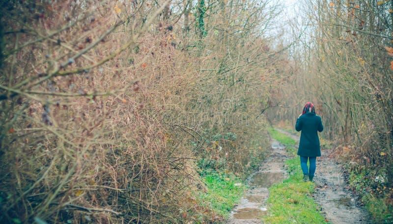 Flickastående i skog royaltyfria foton