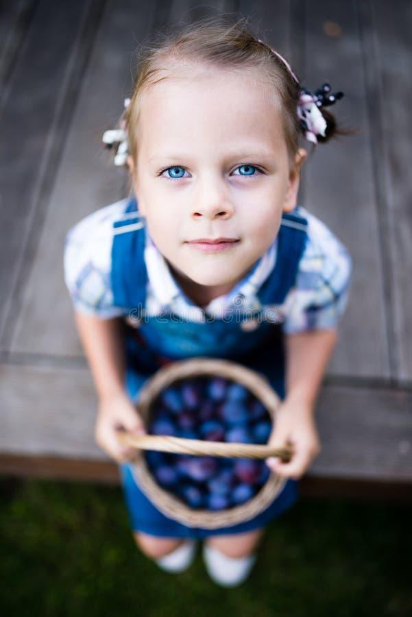 Flickaträdgårdsmästare för litet barn med korgen som är full av plommoner arkivfoto