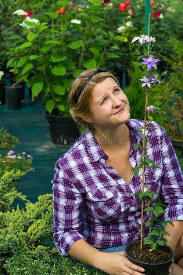 Flickaträdgårdsmästaren ser den högväxta blomman i ett växthus royaltyfri foto