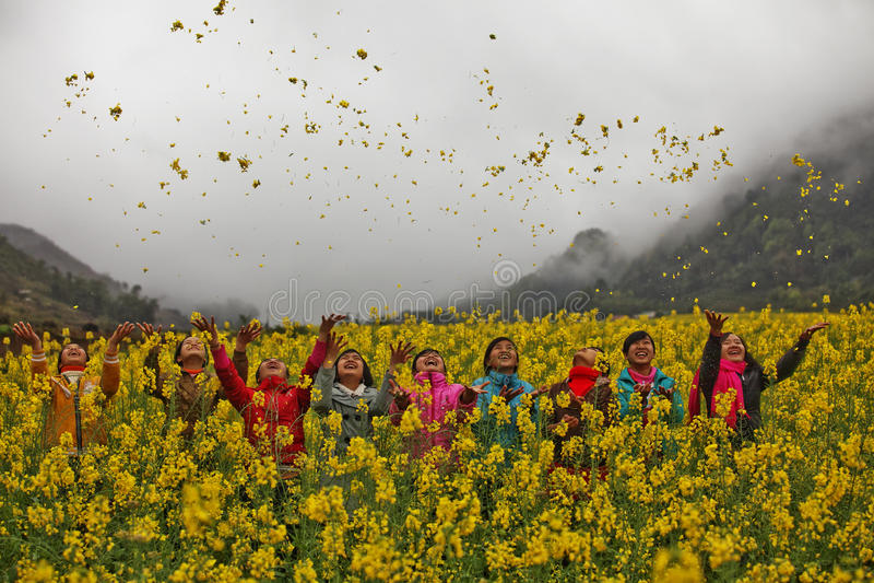 Flickor för etnisk minoritet i ett fält av canola royaltyfria foton