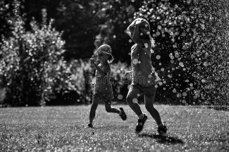 Flickor har gyckel i vatten parkerar in, varm sommar i trädgård, flickor som kör i lyckliga och gladlynta flickor för vattendropp arkivfoton