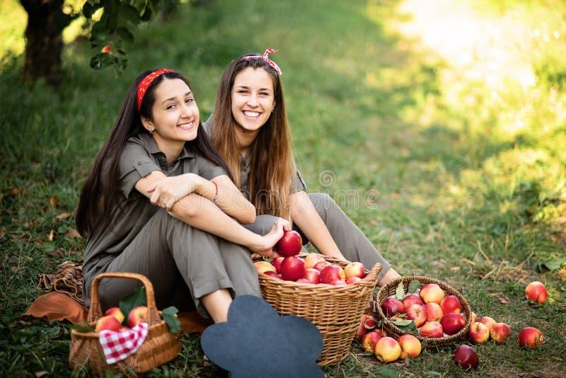 Flickor med Apple i den Apple fruktträdgården Härliga systrar med organiska Apple i fruktträdgården Hösten låter vara kanten med  royaltyfri foto