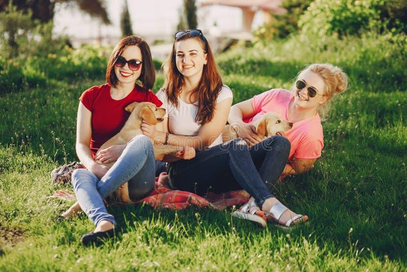 Flickor med hunden arkivbild