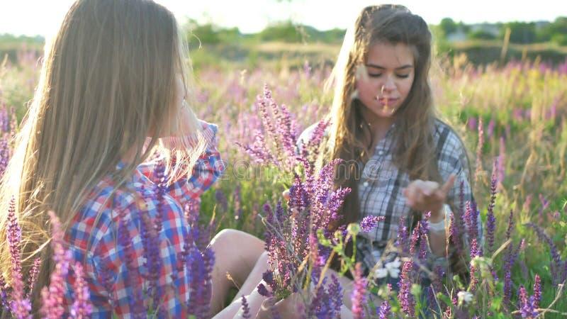 Flickor sitter på fältet med lila blommor arkivbilder