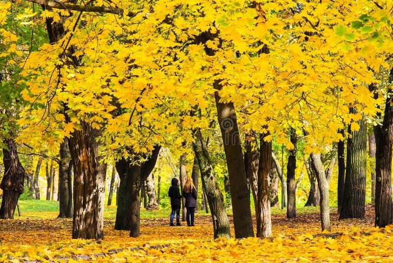Flickor som går i hösten, parkerar av Shevchenko bland de stupade gula sidorna, Dnipropetrovsk, Ukraina arkivbild