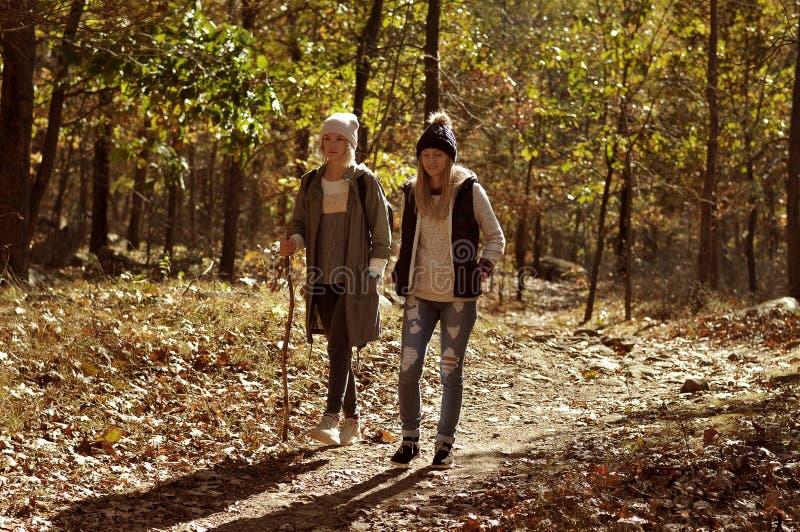 Flickor som går i höstskog i bergen Fotvandra och resa arkivbild