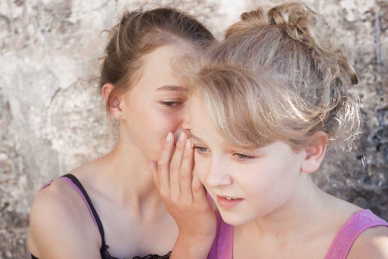Flickor som viskar hemligheter arkivbild