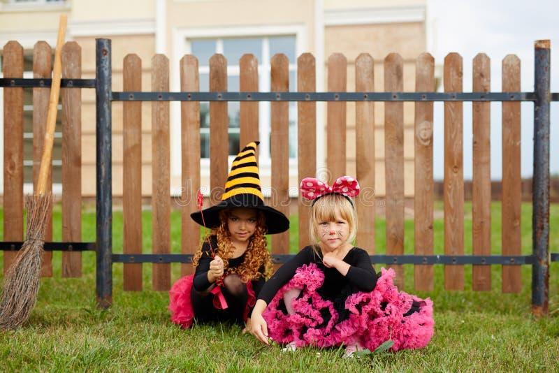 Flickor vid staketet royaltyfri foto