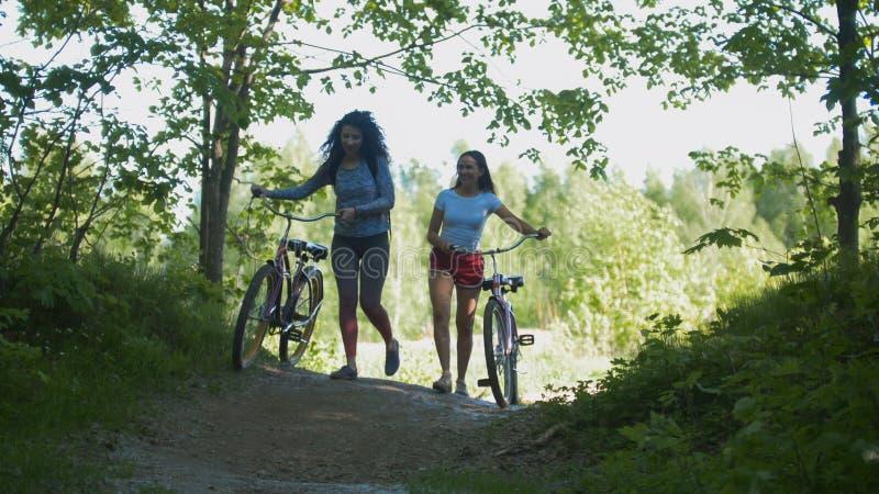 Flickväncyklister lämnar banan av den gröna busksnåret, en solig dag royaltyfri fotografi