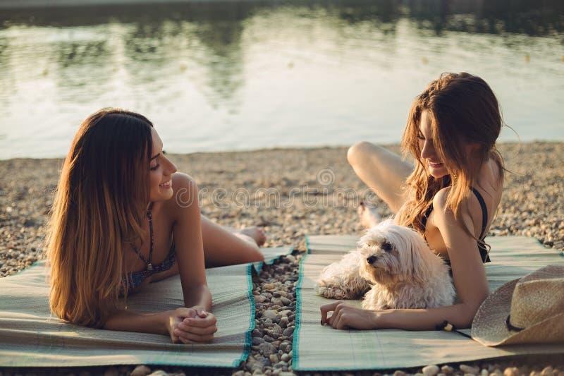 Flickvänner med hunden som ligger på stranden och le royaltyfri fotografi