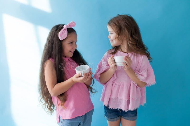 Flickvänsyster för två härlig liten flickor i rosa kläder royaltyfri bild
