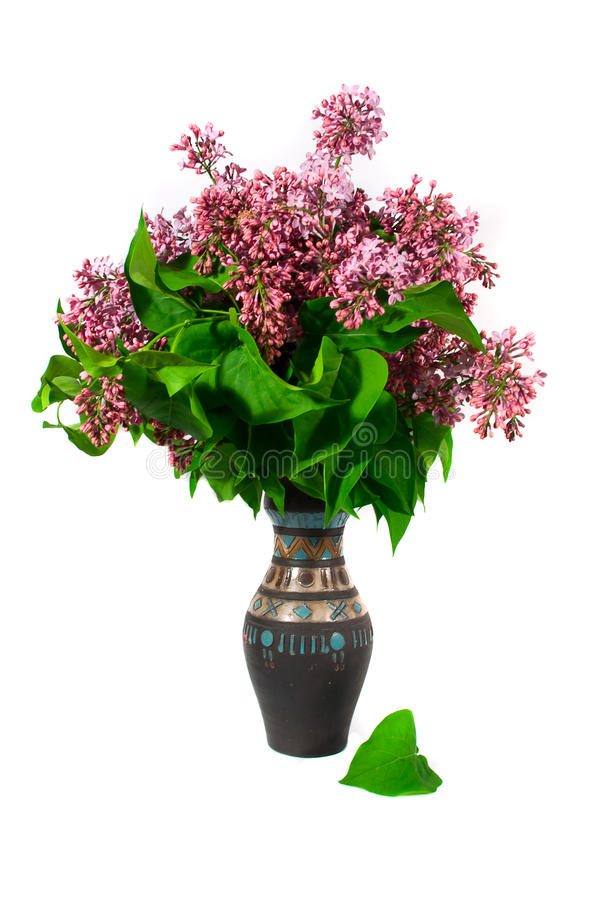 Fliedern in einem Vase lizenzfreies stockbild