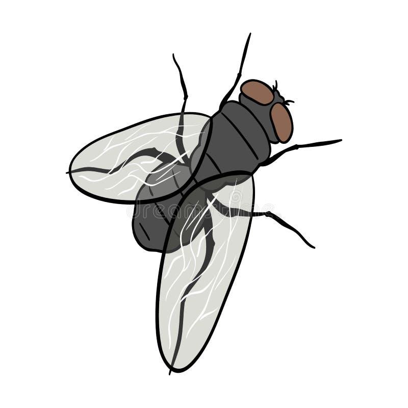 Fliege des zweiflügeligen Insekts Einzelne Ikone der Fliege des zweiflügeligen Insekts im isometrischen Illustrationsnetz des Kar stock abbildung