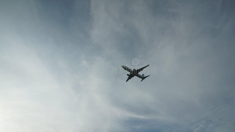 Fliege für Traum lizenzfreie stockbilder