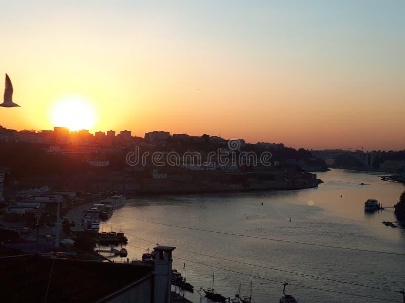 Fliegen über der Stadt, Sonnenuntergang in Porto stockfotografie
