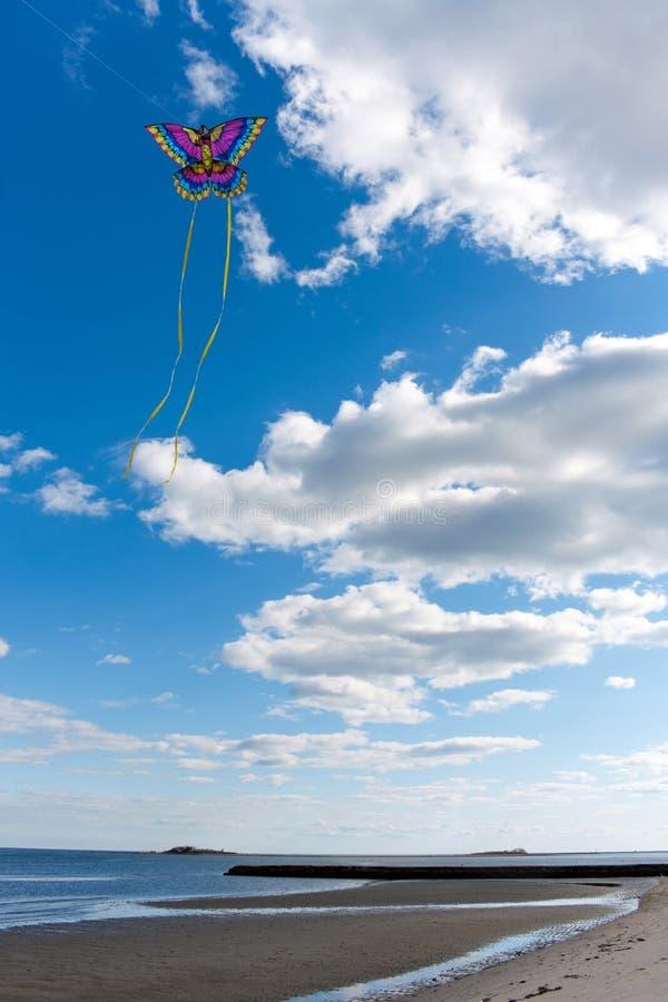 Fliegen eines Drachens am Strand stockbilder