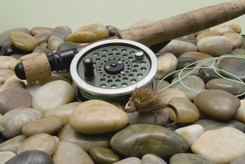 Fliegen-Fischen lizenzfreie stockfotografie