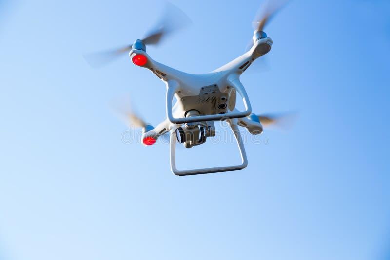 Fliegenbrummen mit Kamera stockfoto