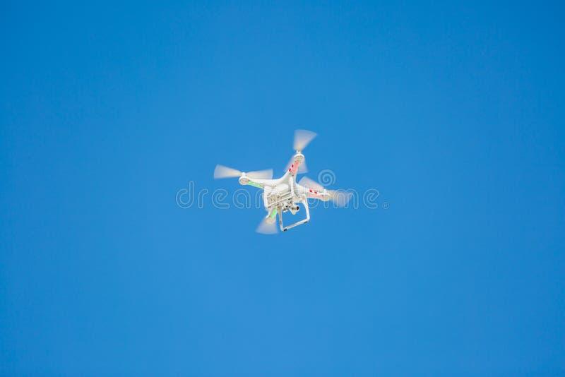 Fliegenbrummen mit Kamera stockfotos