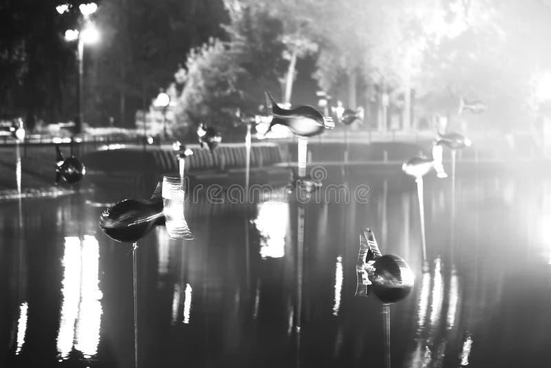 Download Fliegende Fische In Moskau-Park Am Hellen Showhintergrund Stockfoto - Bild von reich, hell: 96926150