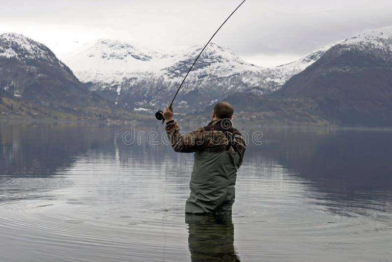 Fliegenfischen stockfotografie