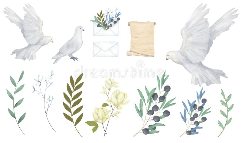 Fliegenfriedenstaube der Taube und des Aquarellvogels des olivgrünen Cliparts digitale zeichnende für die Heiratsfeierillustratio lizenzfreie abbildung