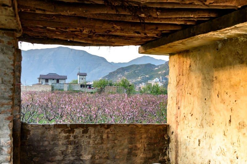 Fliegenklatsche-Landschaft Pakistan lizenzfreie stockfotografie