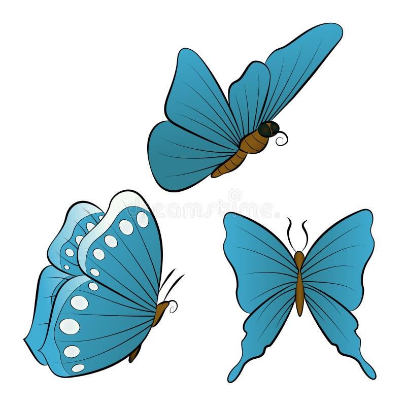 Fliegenschmetterling mit blauer Flügelfarbe vektor abbildung
