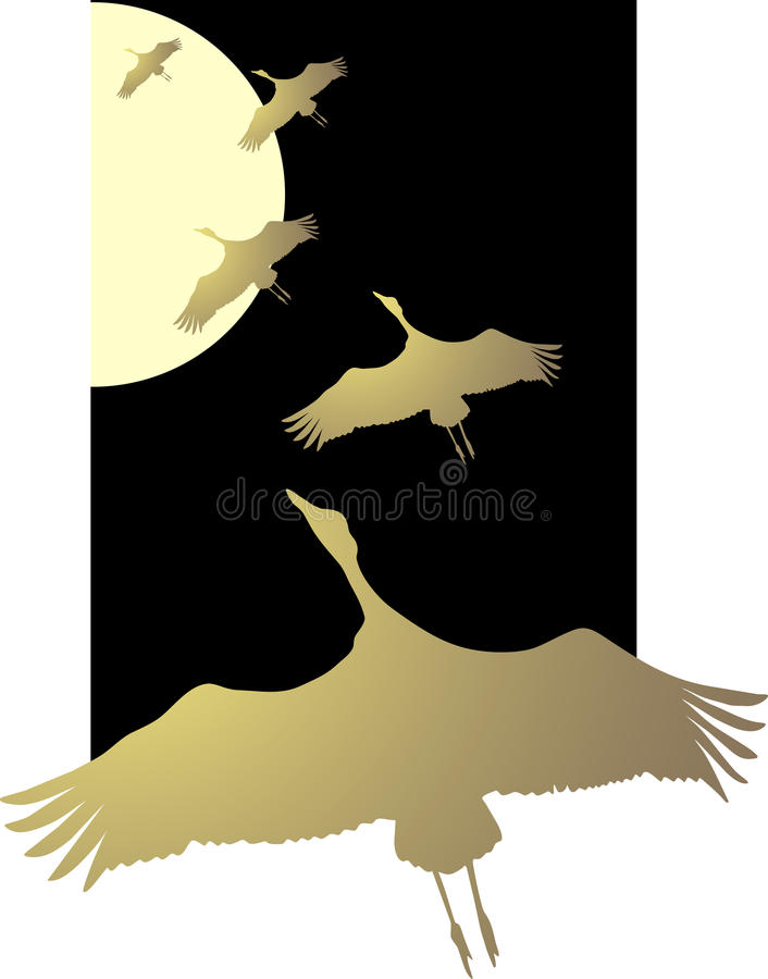 Flight of a bird. Black abstract background with scene of the birds royalty free illustration