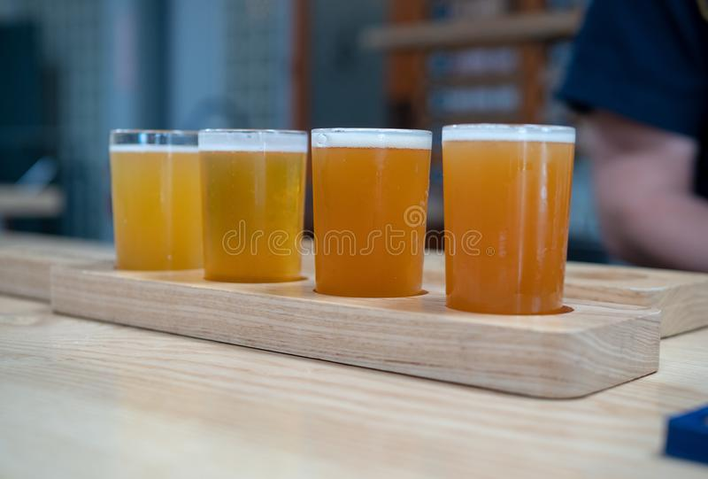Flight of light colored craft beers sitting on wooden plank on a. A flight of light colored craft beers sitting on wooden plank on a bar top royalty free stock images