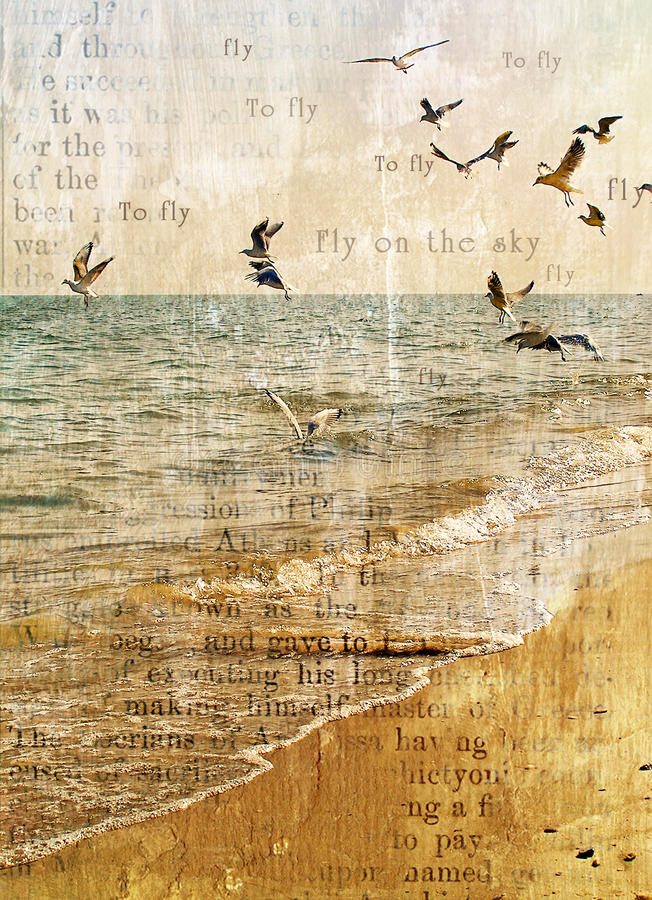 Free Flight Of Seagulls Over The Sea. Royalty Free Stock Photography - 13851887