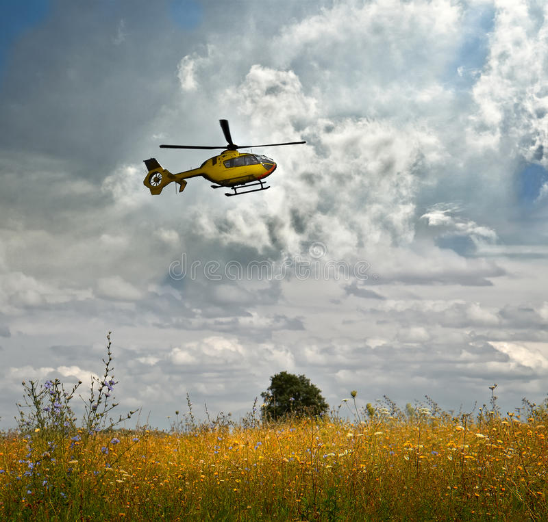Flight over a field-taking off helicopter over a flowering meadow against a cloudy sky stock image