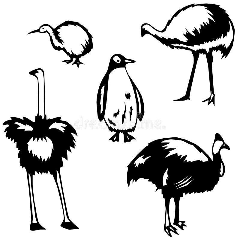 Flightless birds royalty free illustration