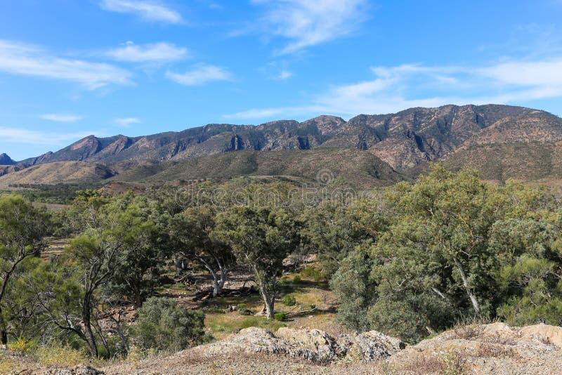 Flinders Rozciąga się halnych wierzchołki zdjęcie stock