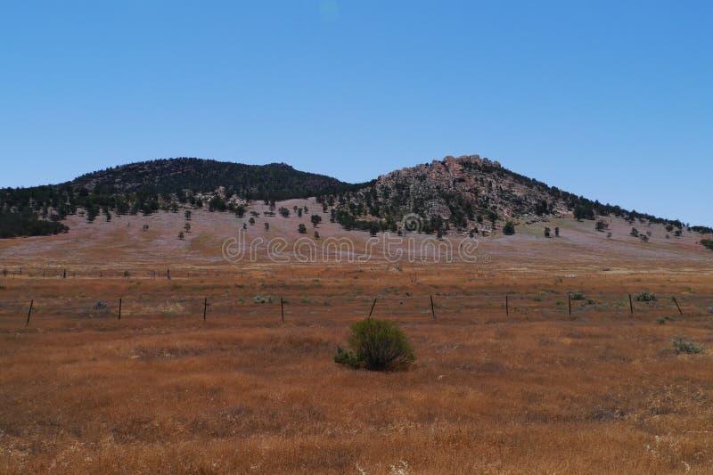Flinders Rozciąga się parka narodowego zdjęcie royalty free