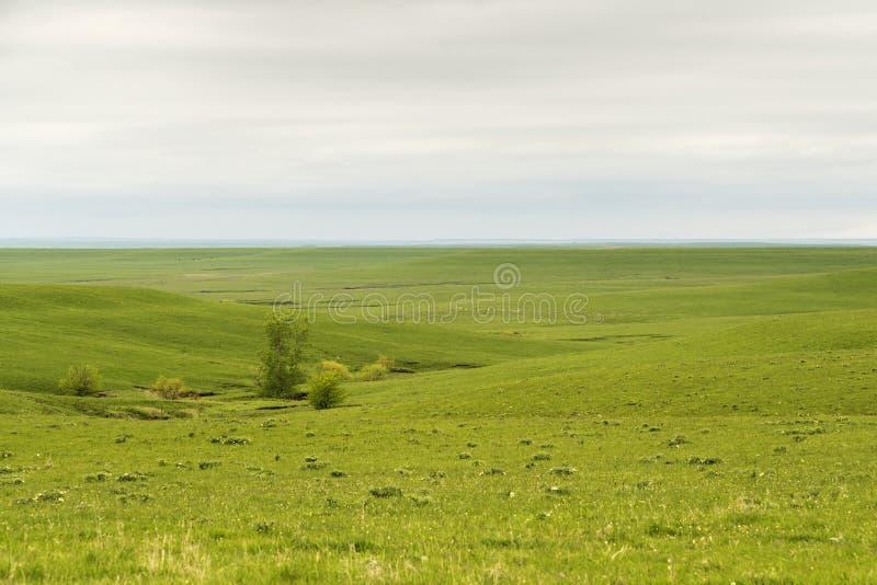 Flint Hills of Kansas. Green pasture land in the Flint Hills of Kansas royalty free stock photos